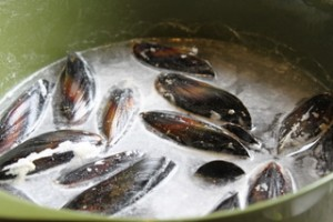 Scrubbing Mussels with Flour