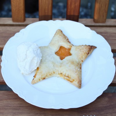 Apricot Pocket Pie