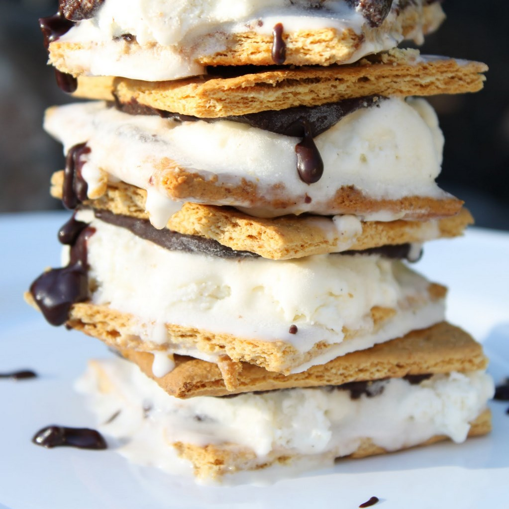mores Ice Cream Sandwiches | Itsy Bitsy Foodies