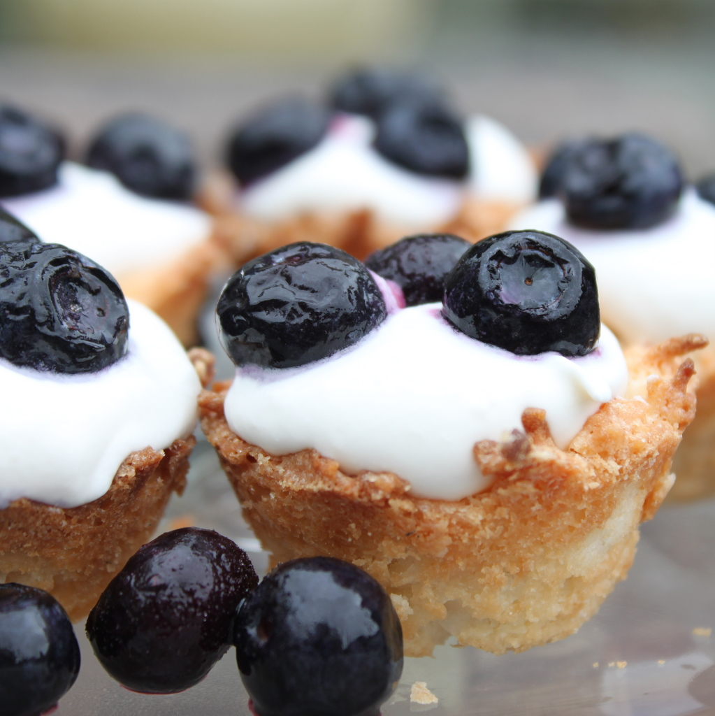 Blueberry Coconut Macaroon Tartlets | Itsy Bitsy Foodies