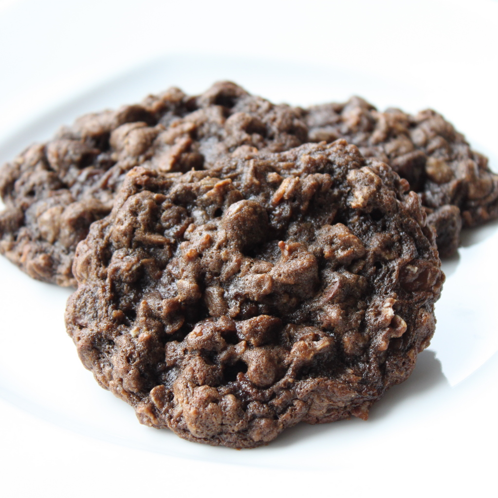 Double Chocolate Oatmeal Cookies   Itsy Bitsy Foodies