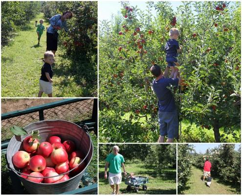 Draper Girls Country Farm, Hood River, Oregon Fruit Loop